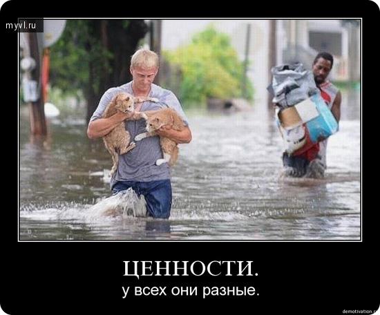 http://myvl.ru/uploads/images/00/06/90/2012/01/07/ea64f5e92f.jpg