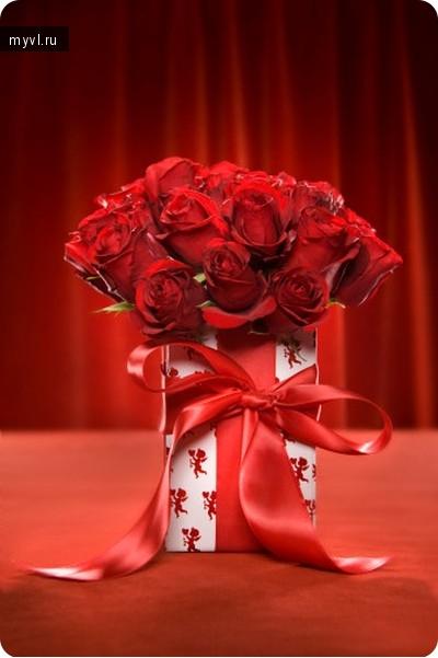 Поздравления не свадьбу девушки