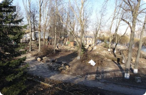 вырубка деревьев в парке